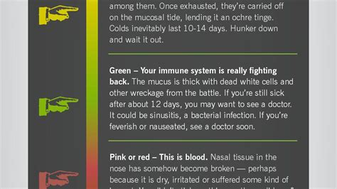color of mucus mucus color chart stool abnormalities mucus blood and