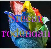 Cestitke Za Rodjendan  Bing Images