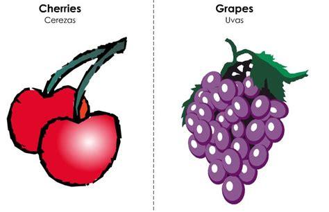 imagenes de uvas con nombre vocabulario b 225 sico en ingles frutas y otros alimentos