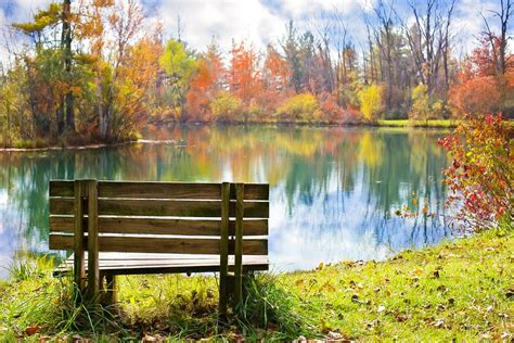 fall bench free photo wood bench pond autumn fall free image on