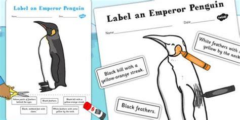 label an emperor penguin worksheet activity winter