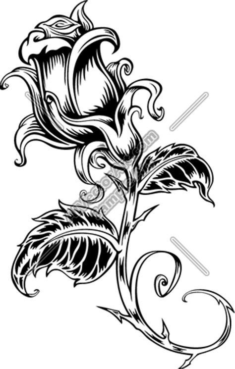 14 images of rose vine coloring pages rose coloring
