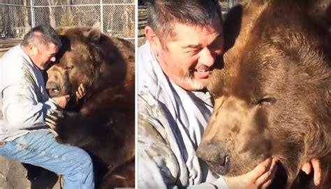 hombres osos facebook oso gigante solo quiere abrazar al hombre que lo rescat 243