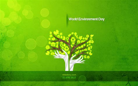 Detox Meaning In Marathi by Environment Data Diary