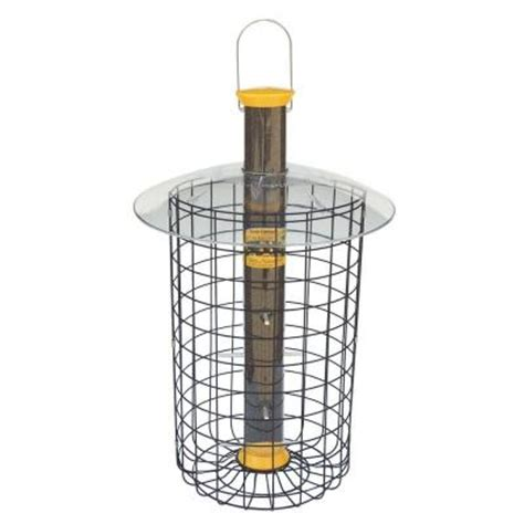 droll yankees nyjer domed cage bird feeder drothdc23y
