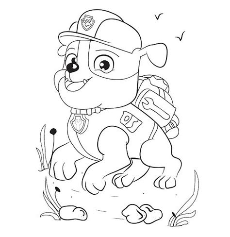 paw patrol coloring pages new pup paw patrol pups free colouring pages