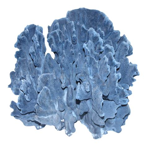 Coral Blue large blue coral specimen chairish