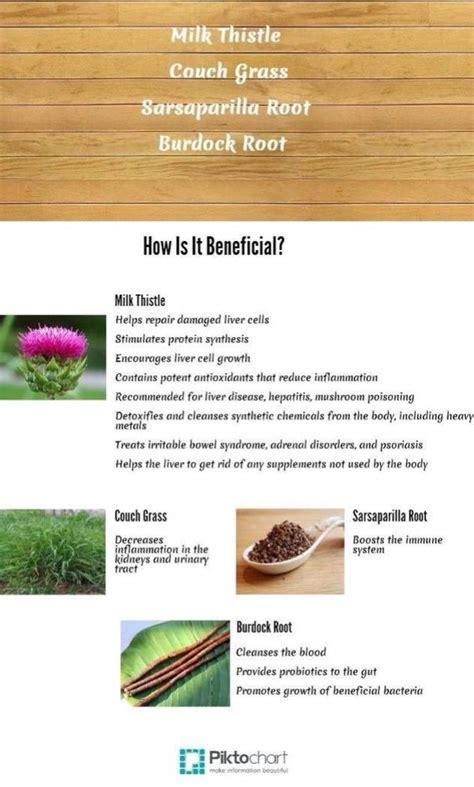 Benefits Of Arbonne Detox Tea by 461 Best Arbonne Images On