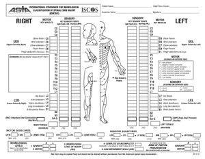 fisioterapeuta luís miguel brazão gouveia: international