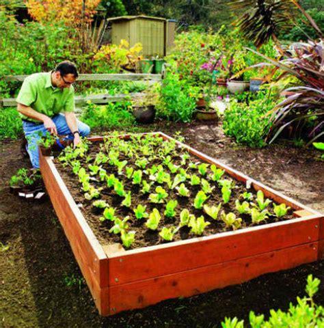 raised cedar garden bed 13 creative diy solutions for raised garden beds webecoist
