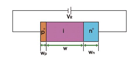 switching diode vs regular diode pin photodiode avalanche photodiode