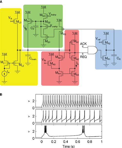 Membran V 3 R Rr frontiers neuromorphic silicon neuron circuits