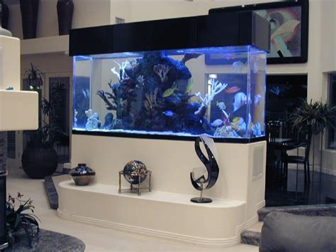 aquarium design by michael 165 best reef tank inspiration images on pinterest