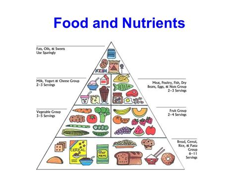 carbohydrates nutrients food and nutrients ppt