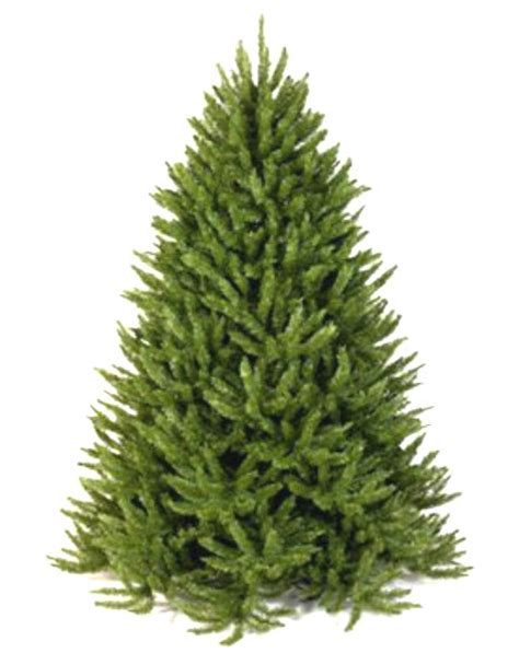 meadow fir 10 christmas tree images artificial trees made in usa
