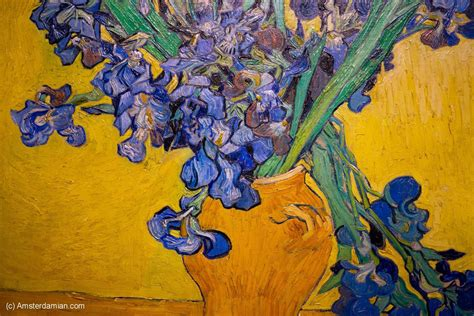 Gogh Vase With Irises by Gogh Museum Amsterdamian