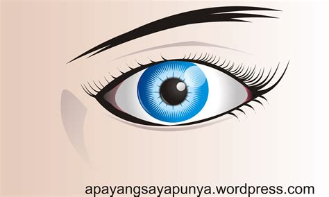 tutorial corel gambar vektor membuat gambar vektor mata dengan coreldraw apa yang