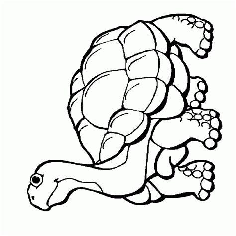 animales peligro extincion peru para colorear dibujos para colorear animales en via de extincion ideas
