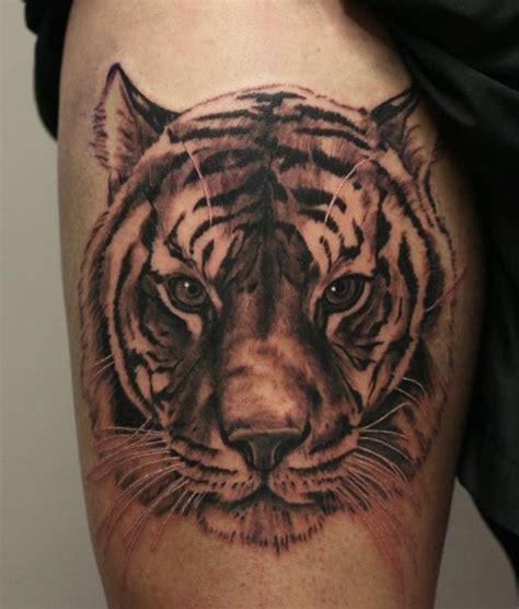 tiger head tattoo  belly  ab martinez