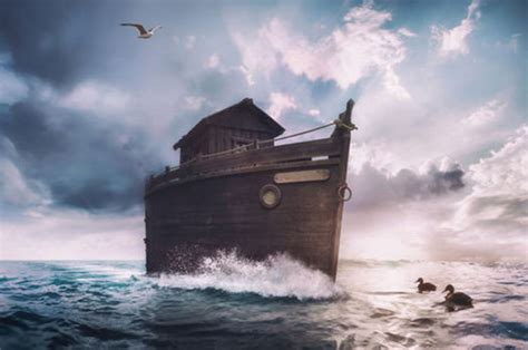 noah s noah s ark found bible breakthrough as wooden structure