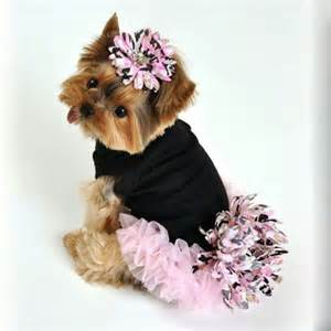 25 best ideas about yorkie clothes on