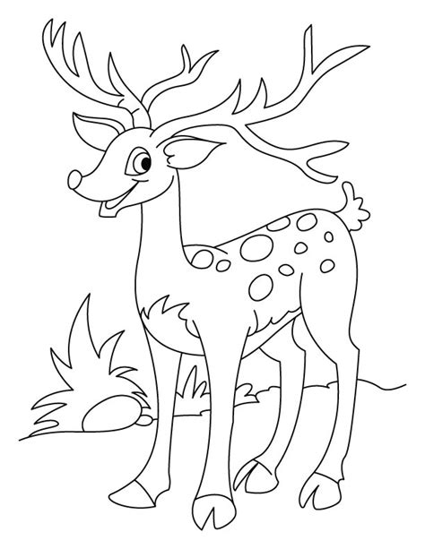 running deer coloring page deer coloring pages that make your day