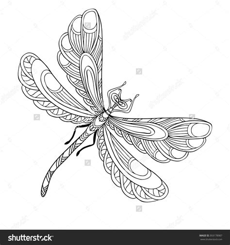 dragonfly coloring page dragonfly coloring pages coloring pages
