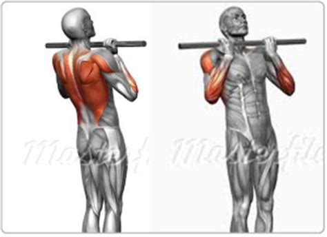 Assisted Bench Press Machine Chin Up Progression Help For Women Amp Targeting Fat Not