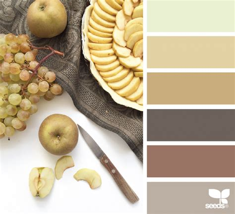seeds color palette seeds color palettes 17 images about decorating on