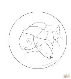 turtle eggs coloring page baby turtle hatching from egg coloring page free