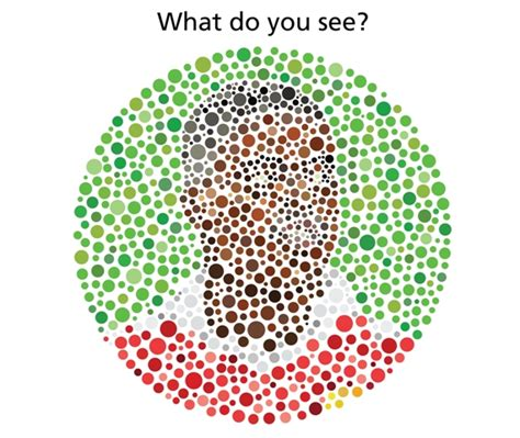 define color blindness color blindness definition color blindness definition quizlet