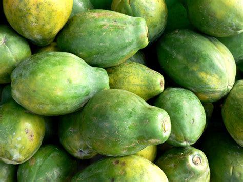 wann ist papaya reif papaya lagern 187 das sollten sie beachten