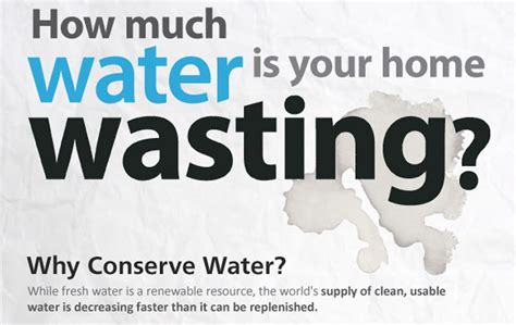 How Many Series Of House Is There Elocal Infographic Shows How Much Water Your Home Is