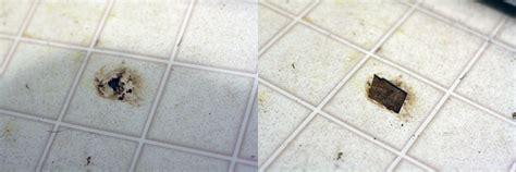 Linoleum Roll Flooring by How To Paint Vinyl Or Linoleum Sheet Flooring