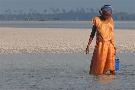 turisti per caso zanzibar kizimkazi viaggi vacanze e turismo turisti per caso