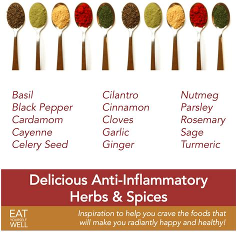 anti inflammatory the most delicious anti inflammatory herbs and spices eat yourself well