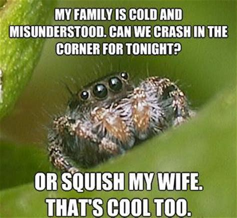 Misunderstood Spider Meme - funny quotes about killing spiders quotesgram