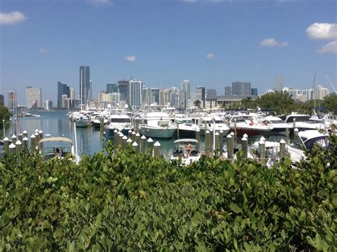 tracker boats miami ok a day out in miami south beach optional south florida