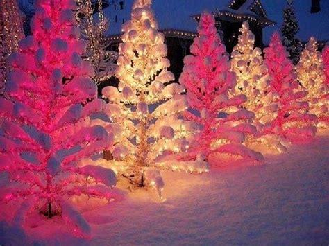 Pink White Christmas Tree Lights My Pink Christmas Pink Tree Lights