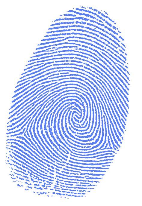 Background Check And Fingerprinting Types Of Fingerprint Patterns Patterns Gallery