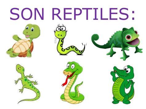 imagenes de animales vertebrados reptiles animales vertebrados