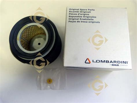 Spare Part Filter air filter cartridge 2175254 engines lombardini gdn