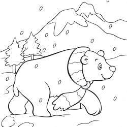 kutup ayısı boyama Çocuklar için boyama sayfaları cicicee