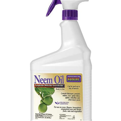 aphids  neem oil spray  aphid  fungus control