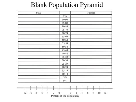 How To Make A Population Pyramid On Paper - 5 best images of chore chart template for classroom free