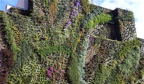 giardino verticale madrid giardini verticali nuova sfida per blanc al caixa