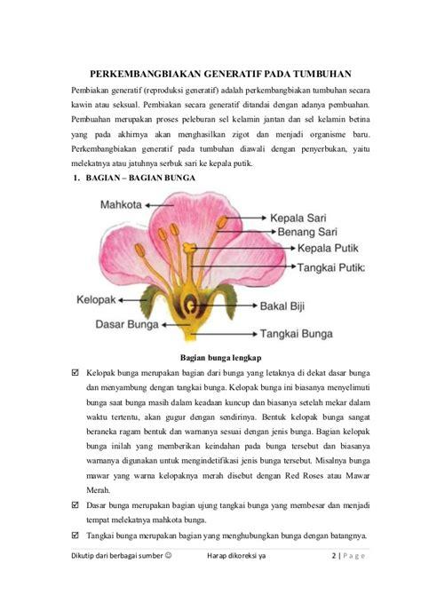Cara Berkembang Biak Tanaman Bunga Sepatu Informasi Seputar Tanaman Hias