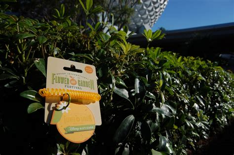 Activate Disney Gift Card - stop and smell the oranges new disney gift card for epcot international flower