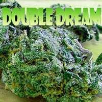 Amsterdam Garden San Jose by San Jose Marijuana Dispensaries On 23 Pins