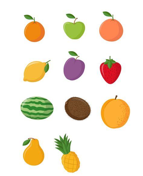 fruit vector fruit vector clipart best